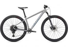 Bicicleta SPECIALIZED Rockhopper Expert 29 - Satin Silver Dust/Black Holographic L
