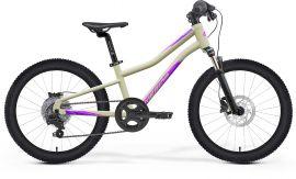 Bicicleta Copii MERIDA Matts J.20 UNI (10'') Violet Inchis|Roz|Teal 2021